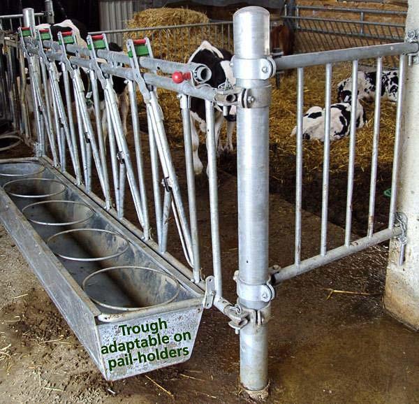 Autocattura vitelli e separatore a ritti verticali
